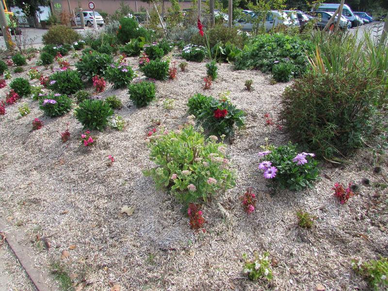 img-jardinage-3