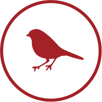 picto-oiseau